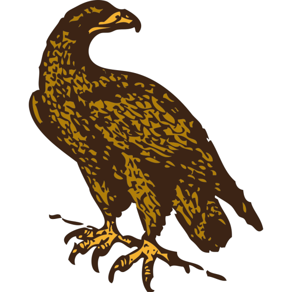 Golden Eagle PNG images