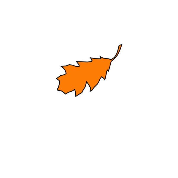 Leaf PNG icons