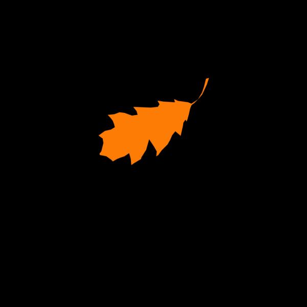 Leaf PNG images