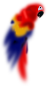 Blurred Parrot PNG images