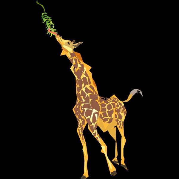 Giraffe Eating PNG Clip art