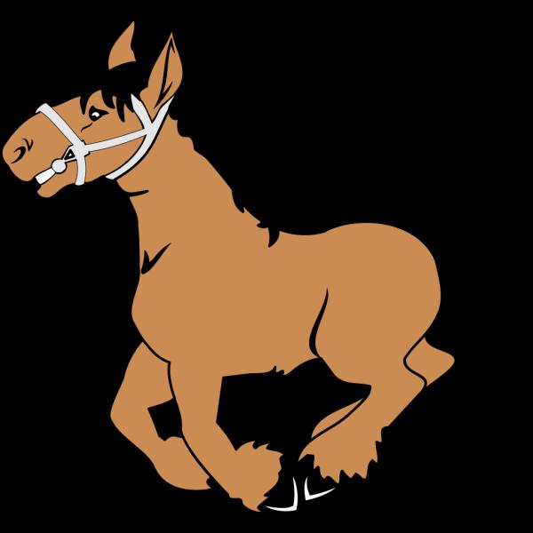Cartoon Horse PNG Clip art