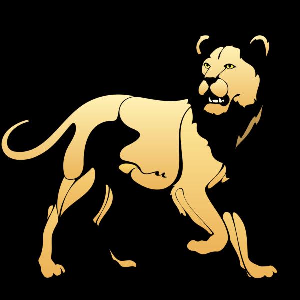Lion 11 PNG Clip art