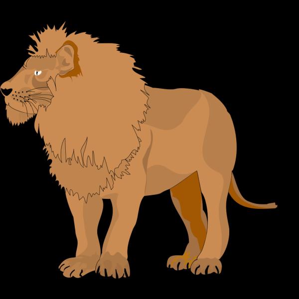 Lion 13 PNG Clip art