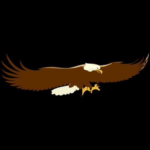 Landing Bald Eagle PNG Clip art