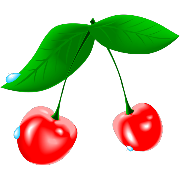 Bird Cherry PNG images