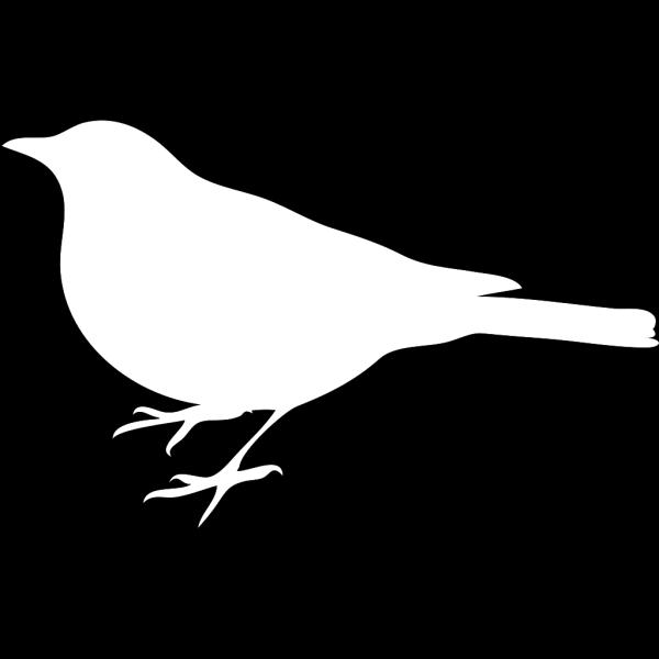 Birdonit PNG Clip art