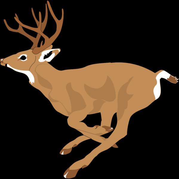 Deer Running Fast PNG Clip art