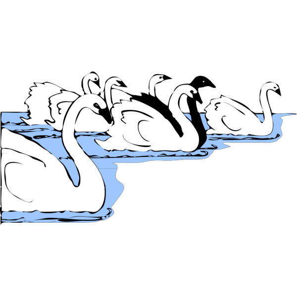 White And Black Swans PNG Clip art