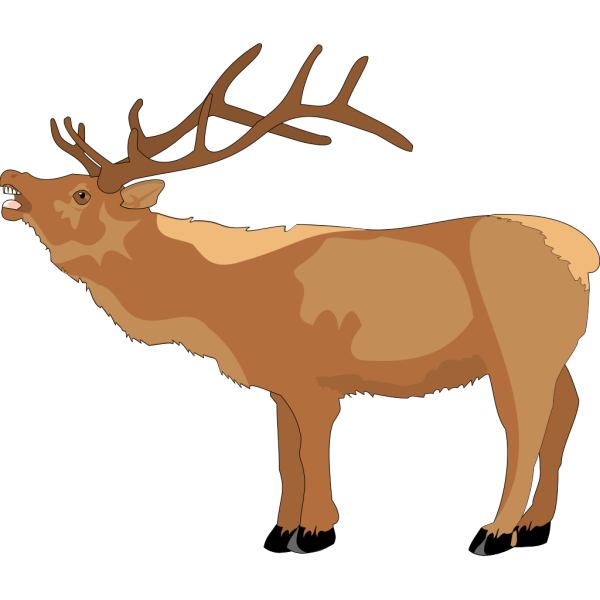 Reindeer Mooing PNG images