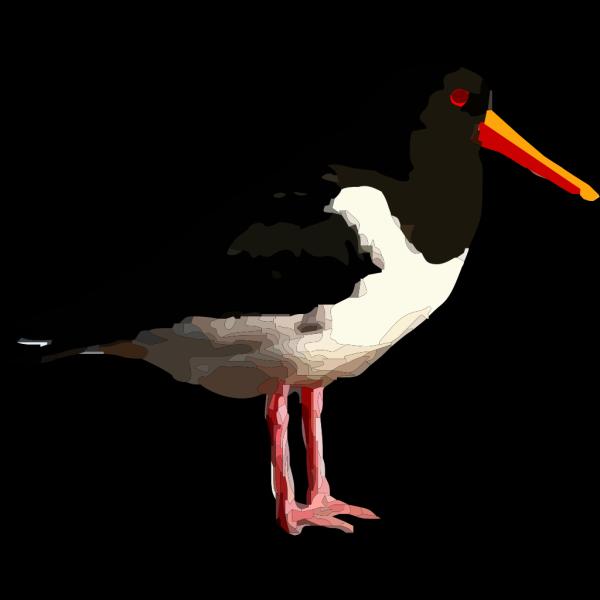 Black Bird Standing PNG Clip art