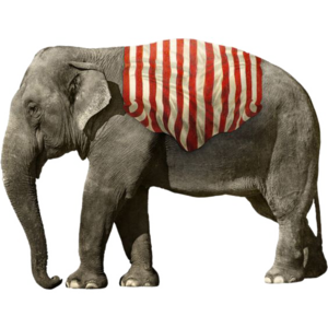 African Elephant PNG Picture PNG Clip art