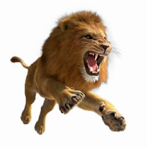 African Lion PNG Image PNG Clip art