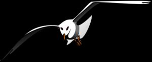 Albatross PNG Pic PNG Clip art