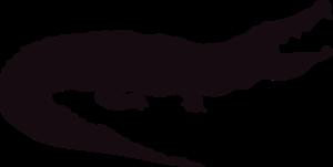 Alligator PNG HD PNG Clip art