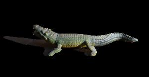 Alligator PNG Image PNG Clip art
