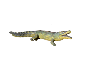 Alligator PNG Photos PNG Clip art