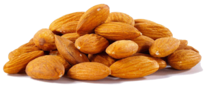 Almond PNG File PNG Clip art