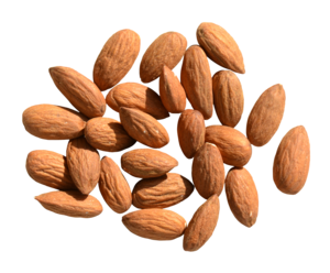 Almond PNG HD PNG Clip art