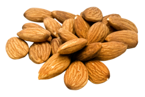 Almond PNG Pic PNG Clip art