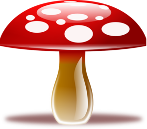 Amanita Muscaria PNG Clipart PNG clipart