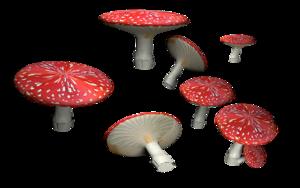 Amanita Muscaria PNG HD PNG Clip art