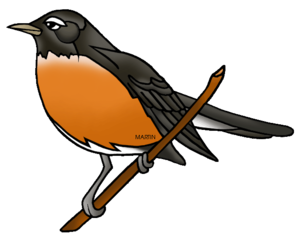 American Robin PNG Photo PNG Clip art