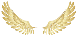 Angel Halo Wings PNG File PNG Clip art