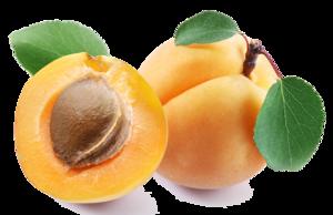 Apricot PNG Clipart PNG Clip art