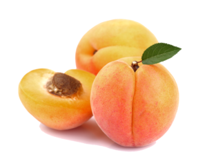 Apricot PNG Image PNG Clip art