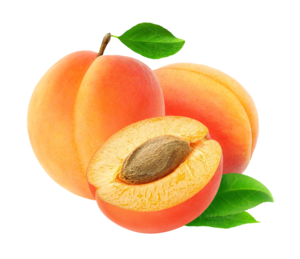 Apricot PNG Transparent Image PNG Clip art