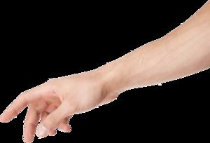 Arm PNG Clipart PNG Clip art