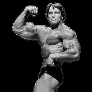 Arnold Schwarzenegger PNG File PNG Clip art