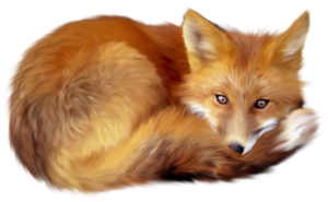 Artistic Fox Transparent PNG PNG icon