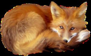 Artistic Fox Transparent PNG PNG Clip art