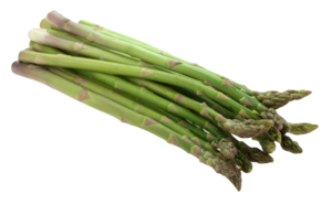 Asparagus PNG Image PNG Clip art