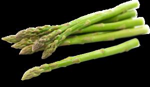 Asparagus PNG Photos PNG Clip art