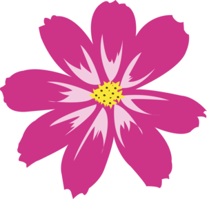 Aster PNG HD PNG Clip art
