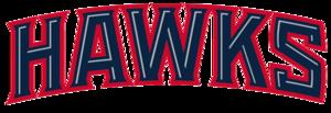 Atlanta Hawks PNG Photos PNG Clip art