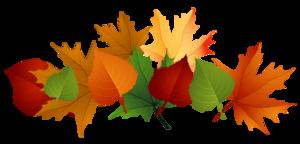 Autumn Leaves PNG Transparent Image PNG Clip art