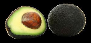 Avocado PNG Pic PNG Clip art