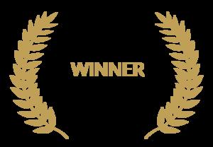 Award Winning PNG Transparent Image PNG image