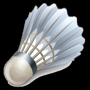 Badminton Birdie PNG Clipart PNG Clip art