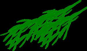 Bamboo Leaf PNG Transparent Image PNG Clip art