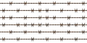 Barbwire PNG File PNG Clip art
