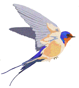 Barn Swallow Background PNG PNG Clip art