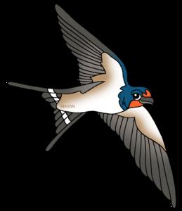 Barn Swallow PNG HD PNG Clip art