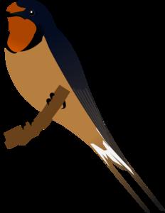 Barn Swallow PNG Image PNG Clip art
