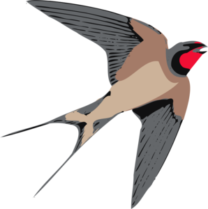 Barn Swallow PNG Transparent PNG Clip art