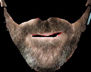 Beard PNG Clipart PNG Clip art